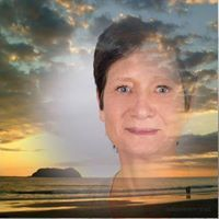 Profilbild von Romy M.